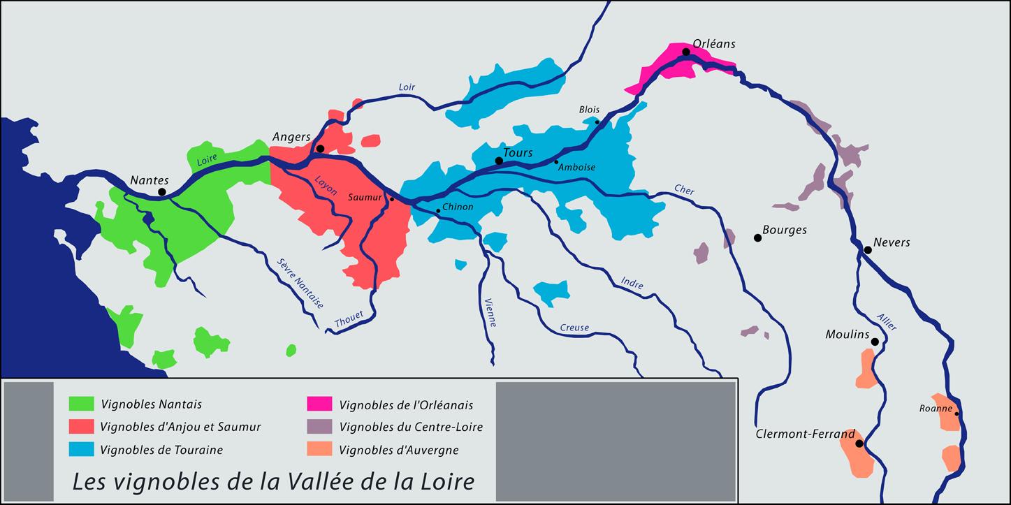 Les vignobles de la Valée de la Loire